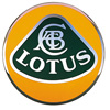 Lotus Boot Struts