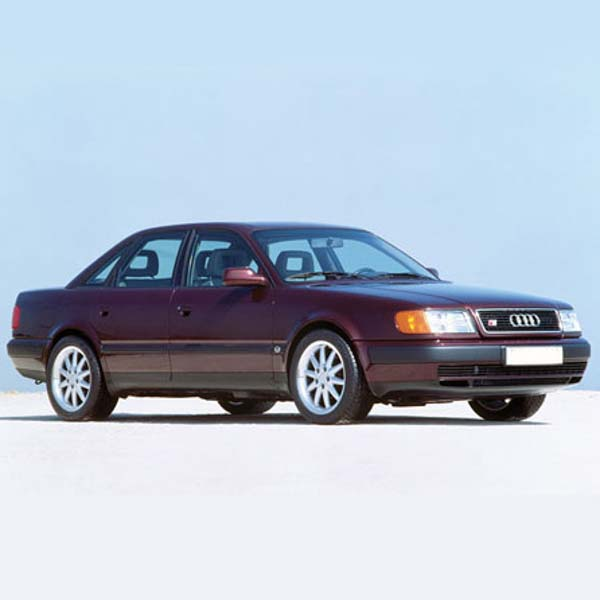 Audi 100 Boot Struts