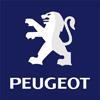Peugeot Boot Struts